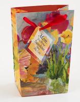Mom You Bring Sunshine Mini Gift Bag