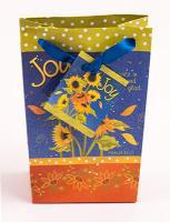 Rejoyce in the Lord Mini Gift Bag