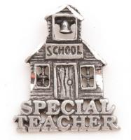 Special Teacher Pewter Lapel Pin